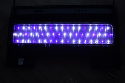 Collaudo Led su plafoniera RED SEA 250